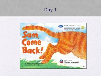 """""""Sam, Come Back!"""" (Weekly PowerPoint for Reading Street 2013)"""