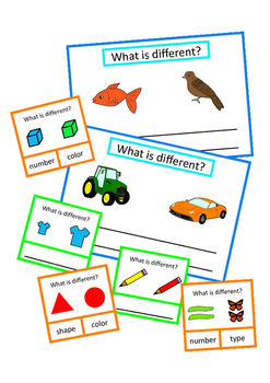 Same Different Attributes Basic Concepts BUNDLE Autism Special Education