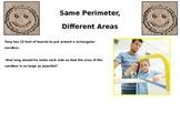 Same Perimeter, Different Areas