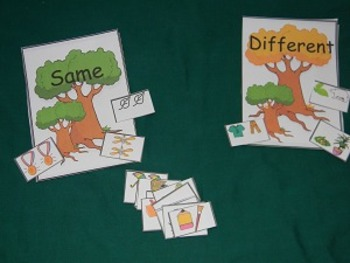 Same and Different Math Center, Classroom Resource Tool- Hard Good