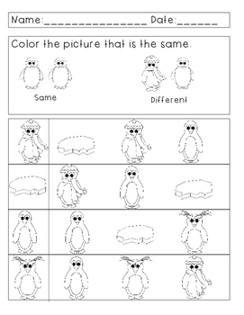 Same and Different Worksheets--Winter Themed