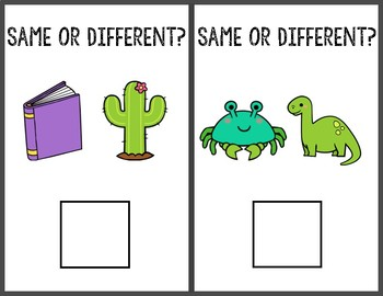 Same or Different Adapted Book