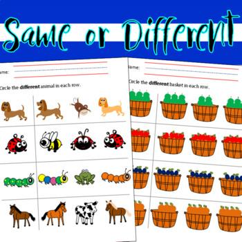 Same or Different? English & Spanish