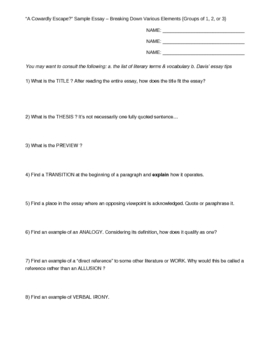 group analysis essay