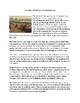 Sample Five Paragraph Essays