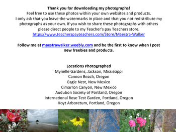 Sample - High Quality Nature Photographs - Royalty Free
