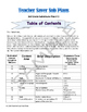 Sample of Teacher Saver Sub Plans (part of 3rd Grade Day 3)