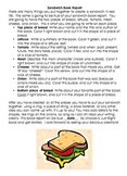 Sandwich Book Report Primary
