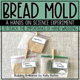 Sandwich Science A Bread Mold Experiment to Teach the Importance of Hand Washing