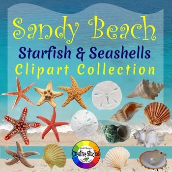 Sandy Beach - Starfish & Seashells (Creative Studios Clipart)