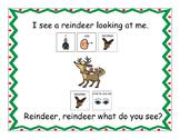 Santa, Santa, What Do You See?