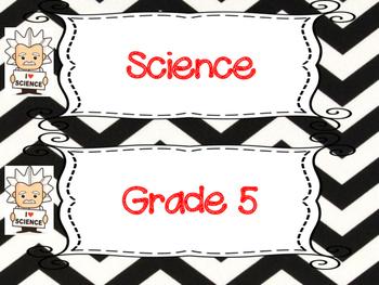 Saskatchewan Grade 5 Science I Can Statement Posters in Black/White Chevron
