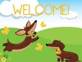 Sausage Dogs Classroom Poster Set