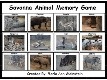 Savanna Animal Memory Game