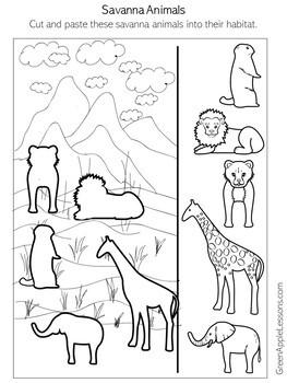Grasslands Animals Worksheet