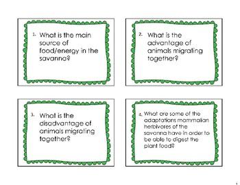 Savanna Task Cards