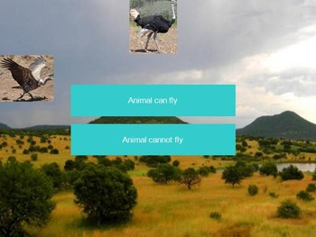 Savannah Animals Interactive Identification Game - Science: Savanna