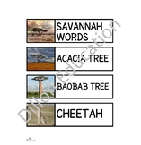 Savannah Unit