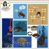 Save Sea Turtles, Threats, Conservation, Extinction, World Sea Turtle Day