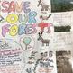 Save our Habitats - Grade 4 Inquiry-Based Habitats & Communities Project +Rubric