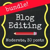 Save with a Bundle! Moderate Editing - 30 Blog Posts