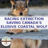 Saving Canada's Elusive Coastal Wolf - Student Video Guide