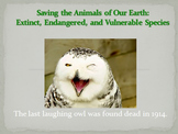 Saving the Animals of Our Earth: Extinct and endangered animals power point