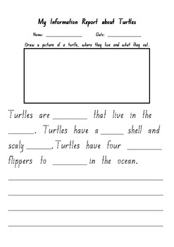 INFORMATION REPORT: My Information Report about Turtles