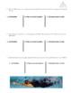 Scaffolded Kinematics Practice: Velocity, Distance, Time