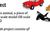 Scale Factor Project & Rubric