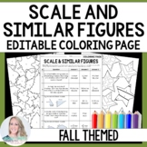 Scale and Similar Figures Coloring Worksheet