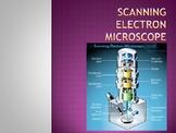 Scanning Electron Microscopes