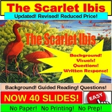 The Scarlet Ibis Short Story Lesson Power Point