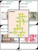 Scavenger Hunt – Currency Crossword