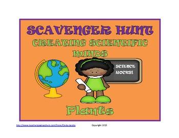 Scavenger Hunt Science Plants