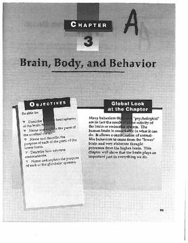 Scavenger Hunt on Biological Bases of Behavior (With Answer Key)