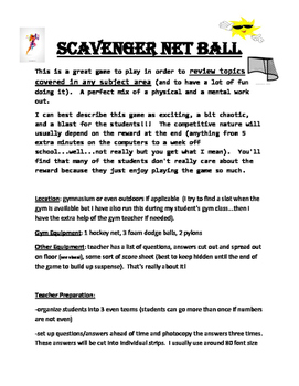Scavenger Net Ball