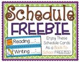 Schedule Cards FREEBIE!