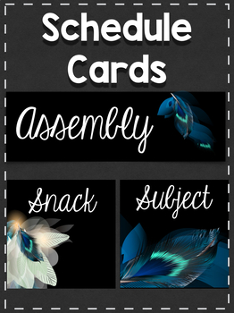 Schedule Cards: Feathers