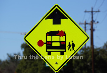School Bus Sign Stock Photo #50
