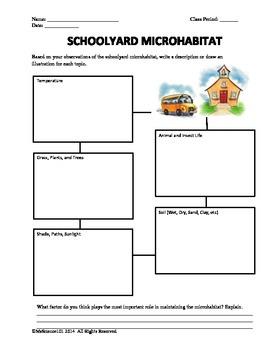 Schoolyard Microhabitat