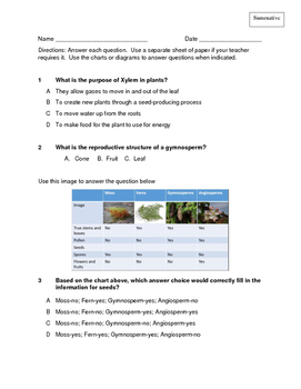 Sci Formative and Summative Assessments: Plant Structure and Classification
