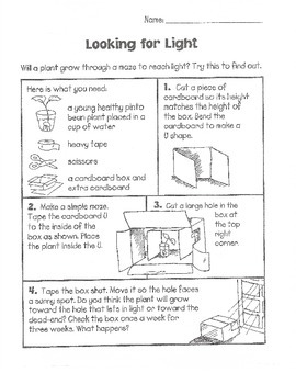 Science Activities - Plants (Grades 3-6)
