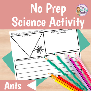 Ants Informational Text and Worksheet