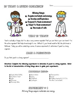 Science Activities and Experiments - Living Organisms