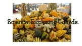 Science Activity: Fall Gourds
