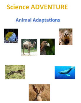 Science Adventure: Animal Adaptations