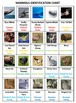 Science Adventure Board Game Mammals Volume 2