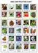Science Adventure Board Game: Seeds