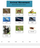 Science - Animal Movement